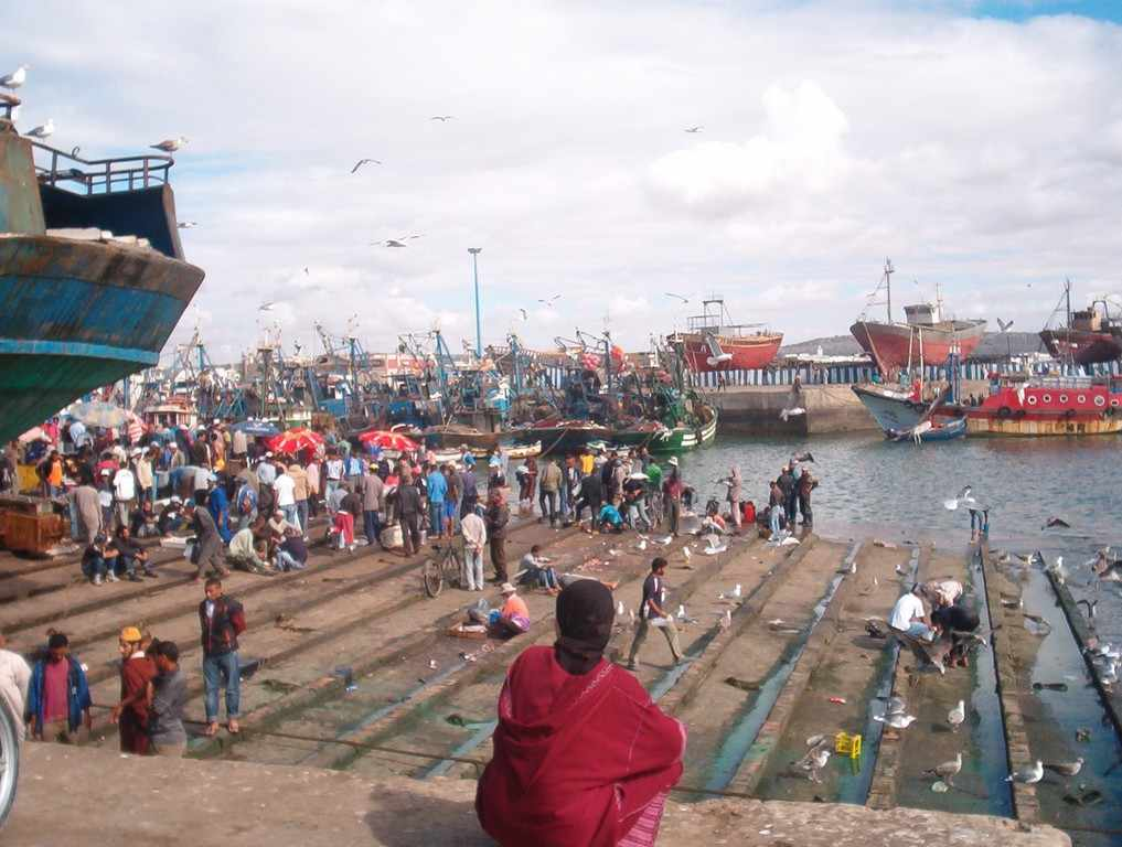 CDA wil nieuw visserij-akkoord Marokko